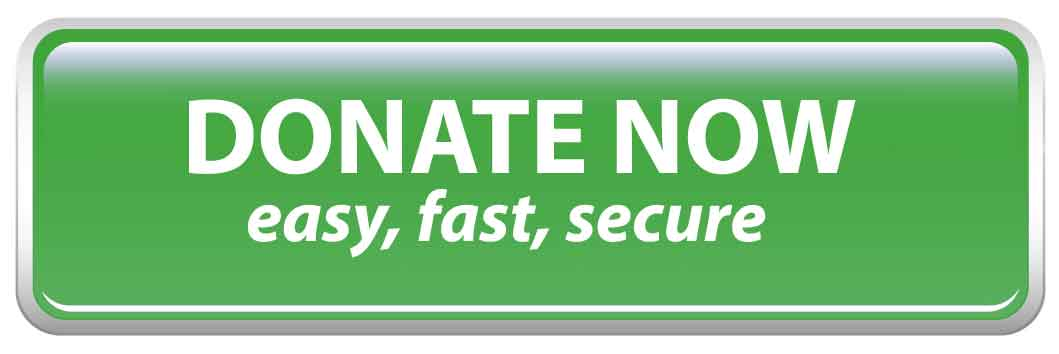 Button_Donate_Now--Green